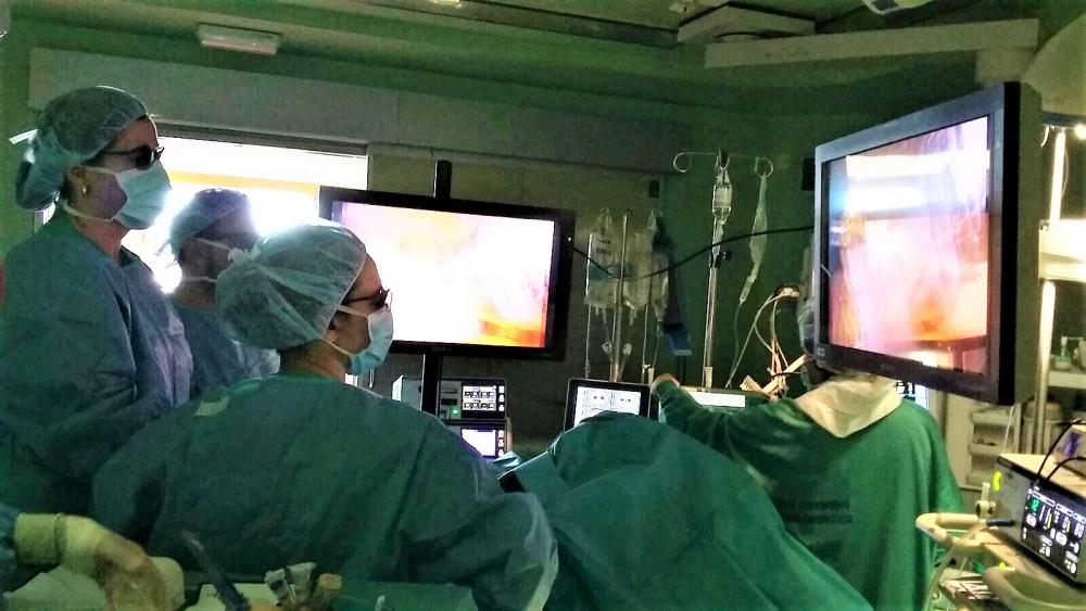 Curso de inmersión Clínica en Cirugía Bariátrica: Pontevedra, 14 y 15 de Diciembre de 2017